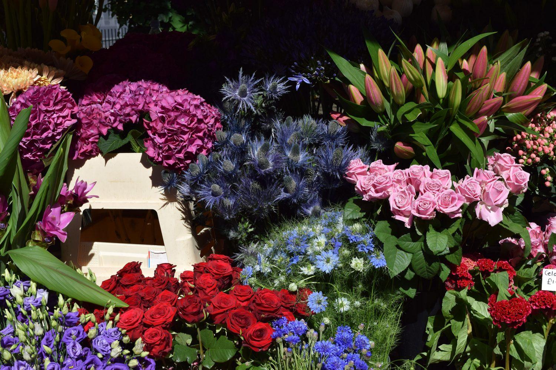 flowers - TINGETTE.com